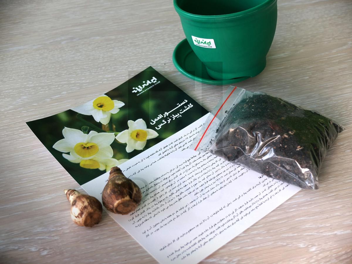 محصولات دیدینو -بسته های خلاقانه کاشت و پرورش گیاه